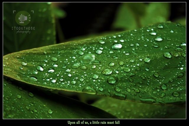 Rain, Rain, Come again